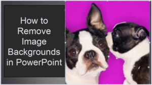 How to Remove Image Backgrounds in PowerPoint