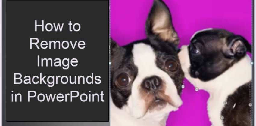 How to Remove Backgrounds from Images in PowerPoint
