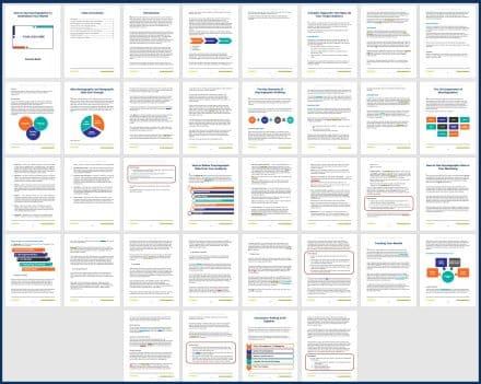 Psychographics_Coursebook