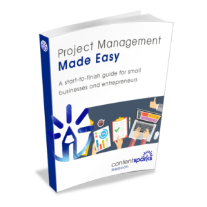 Project Mgmnt 3d