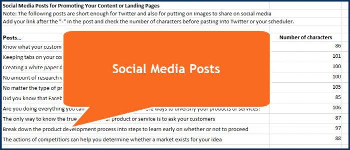 Testing Your Big Idea - Social Media Posts