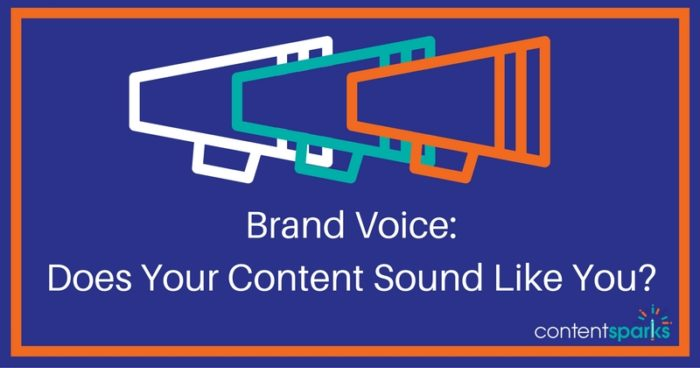 Brand Voice: Does Your Content Sound Like You?