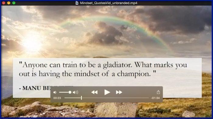Success Mindset for Entrepreneurs - BONUS 2 - Inspirational Video