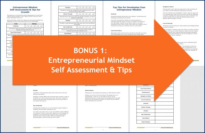 Success Mindset for Entrepreneurs - Entrepreneurial Mindset Self Assessment & Tips