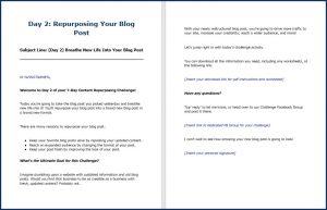 ContentRepurposing_DailyEmails2
