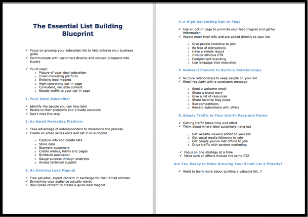 The essential list building blueprint white label course screenshot previews of all your content in the essential list building blueprint malvernweather Choice Image