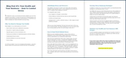 Eliminate Business Overwhelm OptIn Blog 5