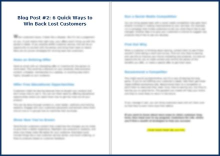Keep Your Customers For Life - Opt In Blog 2