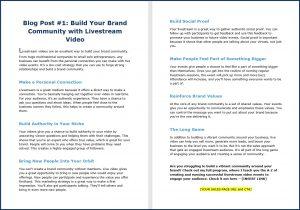 Live Video Marketing - Blog Post 1
