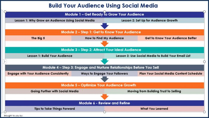 Build Your Audience Using Social Media - Overview Infographic