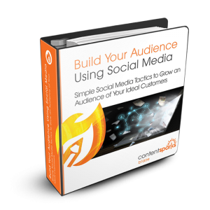 Build an Audience Using Social Media - PLR Course
