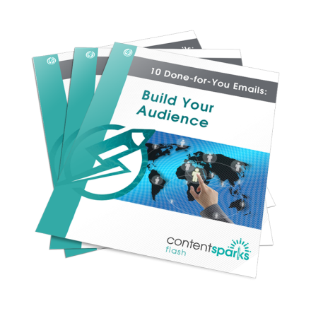 BuildAudienceEmails FLASH3D 2