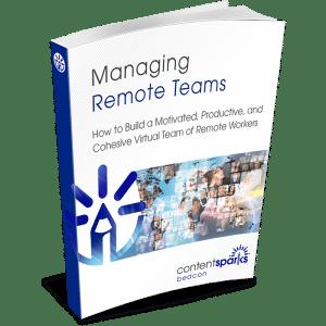 RemoteTeams eCover3D
