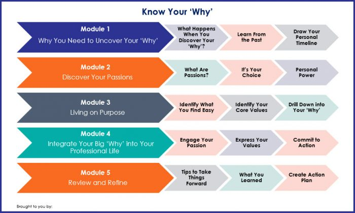 Know Your Why - Overview Infographic