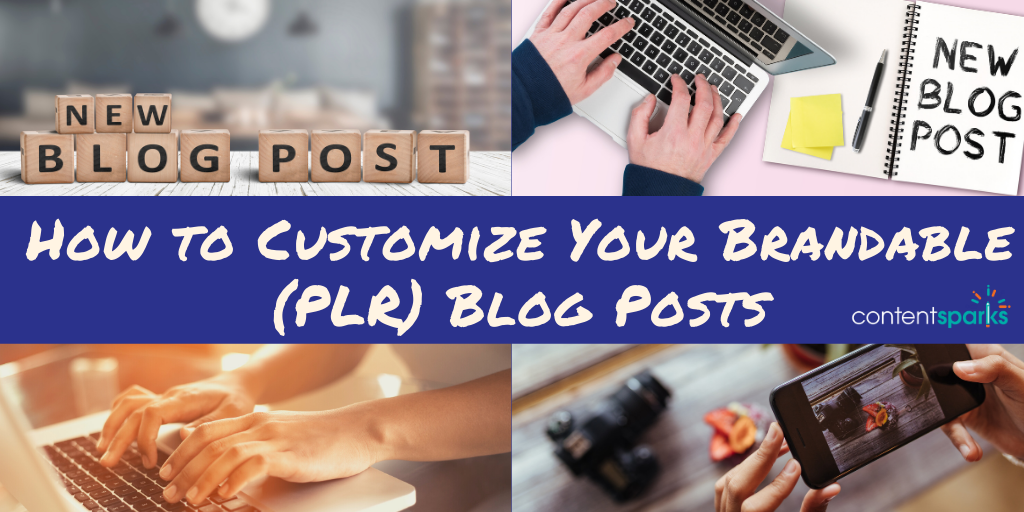 How to customize plr blog posts