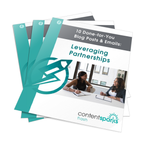 LeveragingPartnershipsBlogPEmails eCover3D