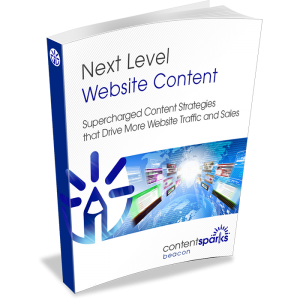 Next Level Website Content - Write Web Content