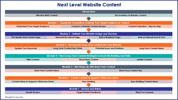 Next Level Website Content - Overview Infographic