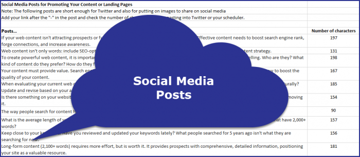 Next Level Website Content - Social Media Posts