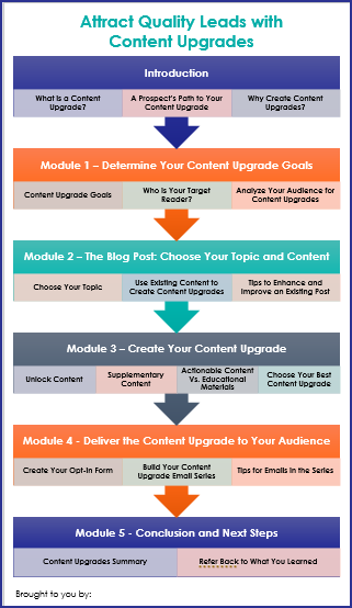 Attract Quality Leads with Content Upgrades - Overview Infographic