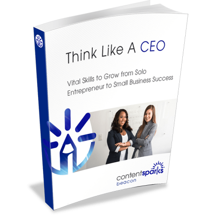 ThinkLikeACEO eCover3D