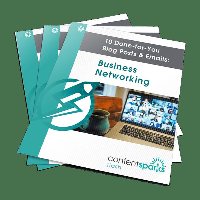 BusinessNetworkingBlogPEmails Flash3D