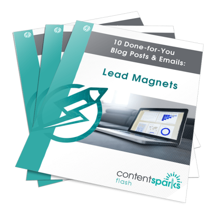 LeadMagnetsBlogPEmails Flash3D